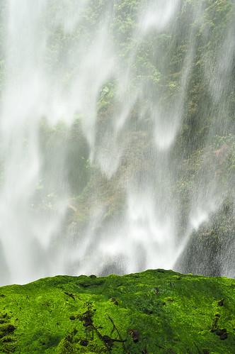 Agua Caliente (87)