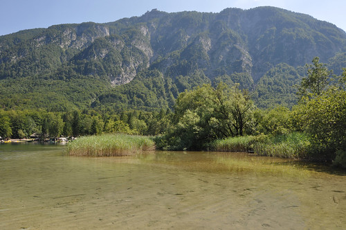 Vogel cable car from Lake Bohinj