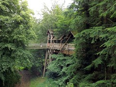 Treehouse walk