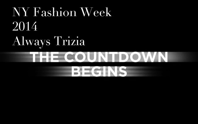 NY Fashion Week 2014 Always Trizia0001