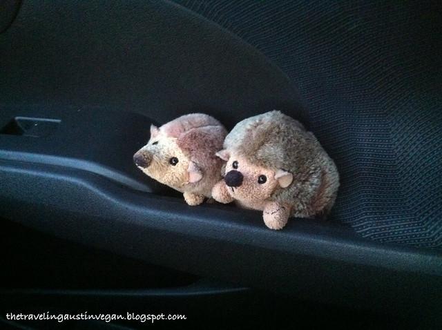 Hedgehogs Go To Dinner