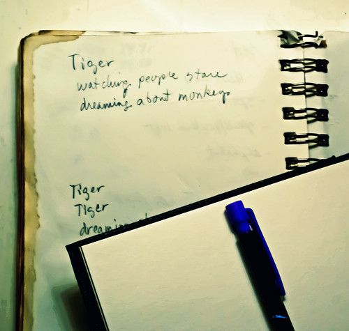 New Sketchbook. Always seems so momentous to start a new sketchbook. Tiger Dreams. by chloe & ivan