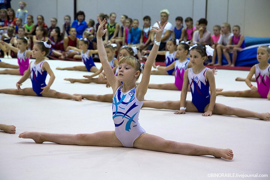 Открытый мастер-класс Алексея Немова в СК «Олимпийский» ©binorable.livejournal.com