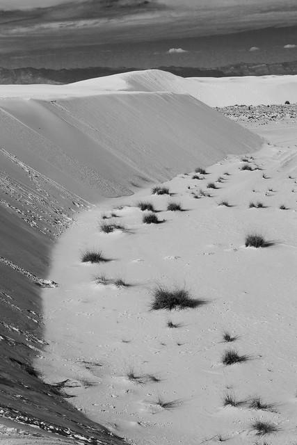 Sund Dune