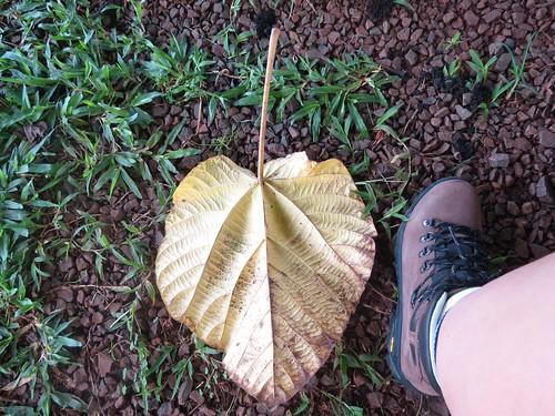 Iguazu Argentina Day 1