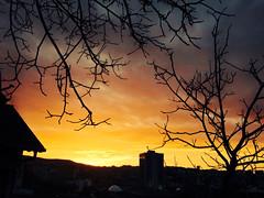 Nature dawns on human drabness