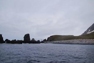 554 Zodiacruise Cooper Bay