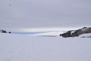054 Wandeling Halfmoon Island