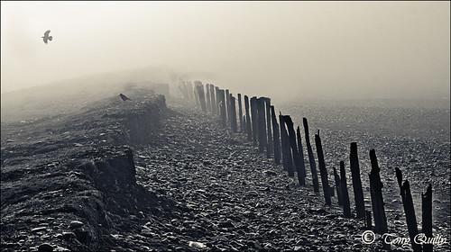 dawnsunriseearlymorning fogroughseaatlanticoceanhightidestormtramorewaterfordpromenadetonyquiltyireland