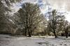 Nieve esta tarde por Urbasa