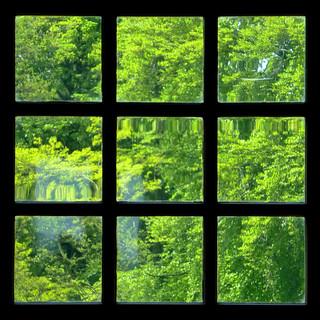 nine green squares