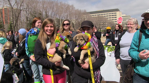 Charlee's Angels for the Animals Rally