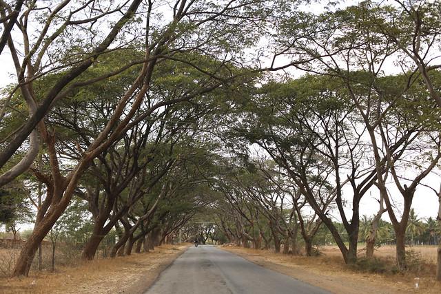 Belle route du Karnataka
