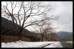 日本京都南丹市_美山雪祭.33
