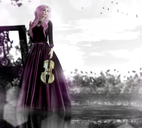 .the widow's song