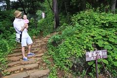 苗名滝 Naena Waterfall