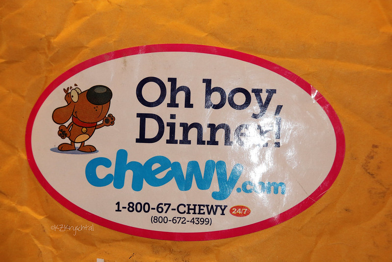 IMG_6225Chewy