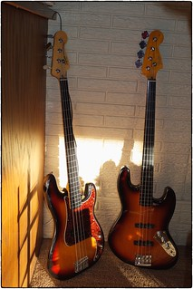 Fretless Basses, February 18, 2015