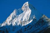 Indien Trekking Garwhal. Imposante Schönheit: Shivling, 6543 m. Foto: Günther Härter.