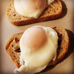 Poached eggs on toast #366photos