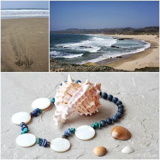 blue shell beach