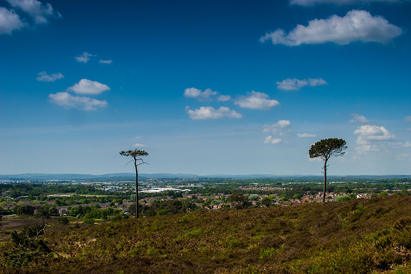 Poole from Canford Heath