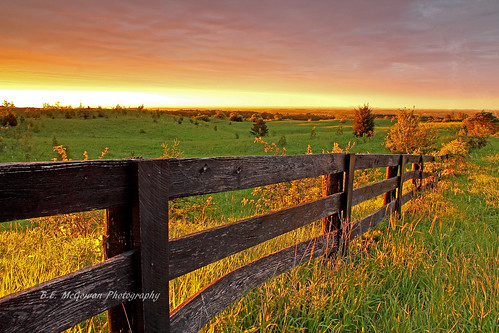 wood old morning trees light cloud sun ontario canada sunrise fence dawn golden glow hill hills horseshoe brampton escarpment caledon dreamphoto