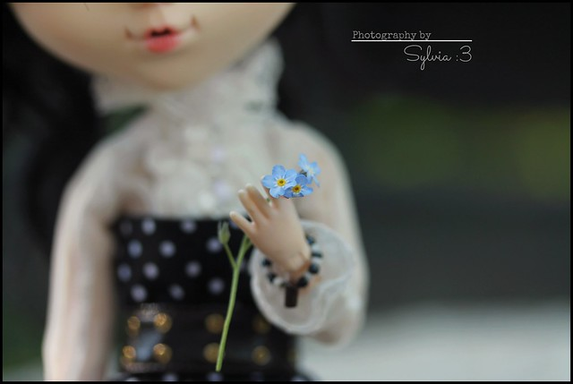 so cute flower ♥