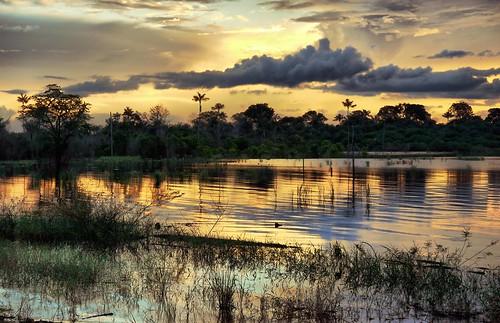 sunset pordosol brasil landscape paisagem panasonic g2 manaus amazonas lumixgvario1442mmf3556