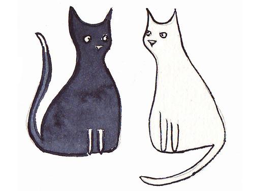 b&wcats
