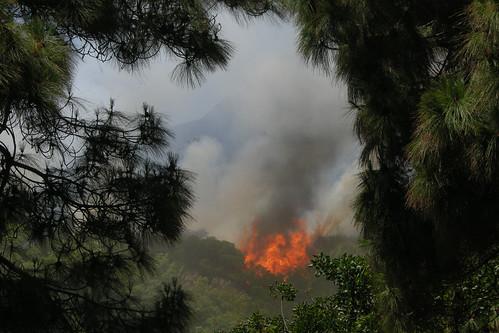 FIRE DSCN8452