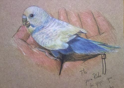 dibujo con lápices de colores