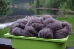mystery-wool2