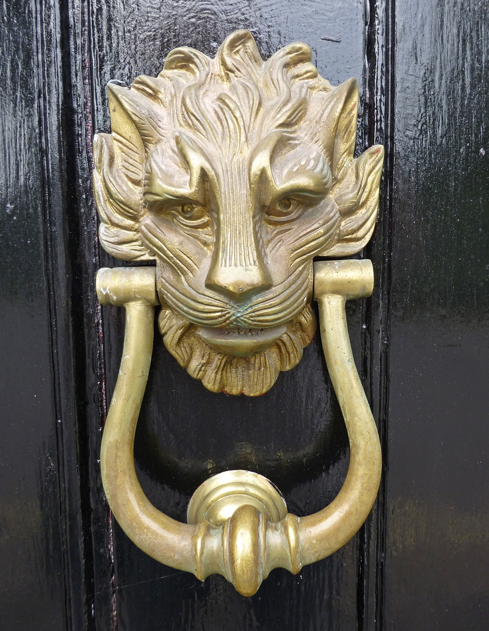 Flora cantiaci knockers and knobs for 10 downing street lion authentic foundry door knocker