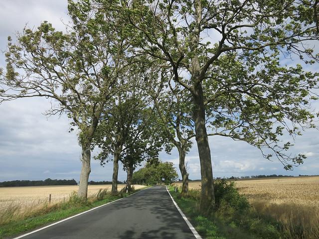 Driving around Rugen