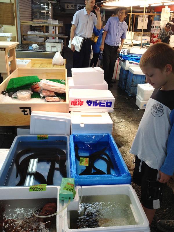 Tsukiji fish market Tokyo IMG_3779