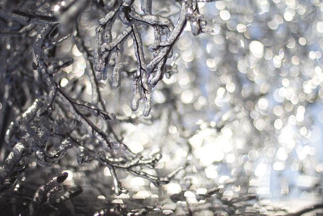 freezing rain photography