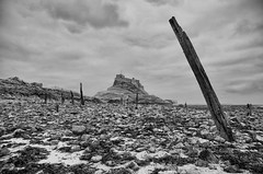 Remains of the Old Pier, Lindisfarne
