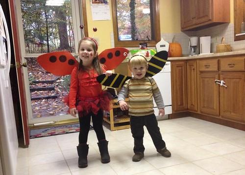 Ladybug Girl Wings