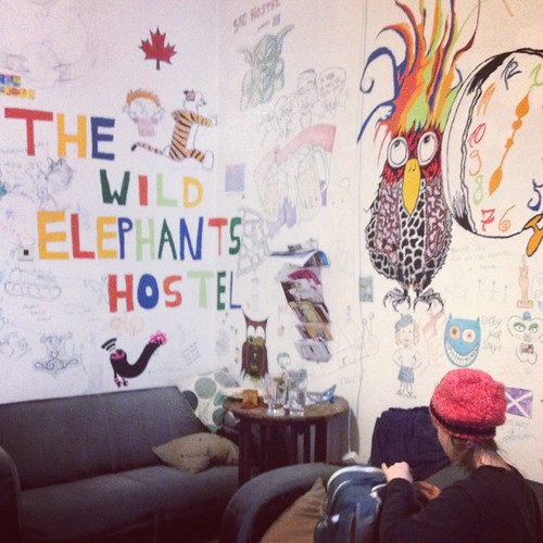 The walls of a room are painted with birds and animals with the words The Wild Elephants Hostel.