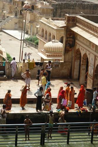 Templo de los monos de Jaipur Galwar Bagh, el templo de los Monos de Jaipur - 13185491955 d3e8dc6b6a - Galwar Bagh, el templo de los Monos de Jaipur