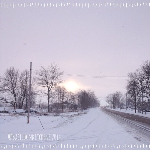 25/3/2014 - the sun {is trying to peak through after driving thru yet another white-out!} where is spring? #photoaday #winter #spring #snow #ctyrd1 #sun #weather #princeedwardcounty