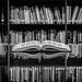 An Open Book by ShutterJack