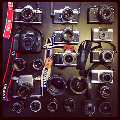 Our Camera [Porn] collection