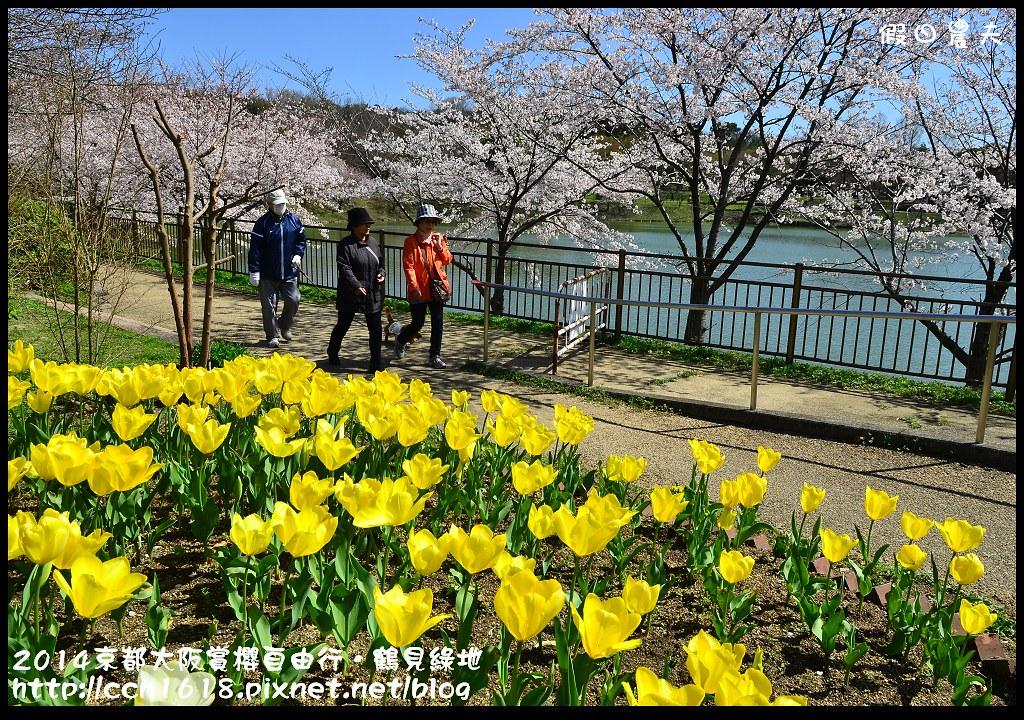 2014京都大阪賞櫻自由行.鶴見綠地DSC_1404