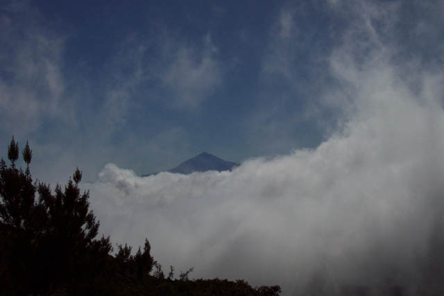 El Teide desde Garajonay. © Paco Bellido, 2003