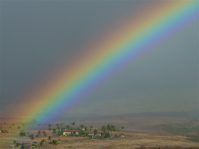 Afternoon rainbow  [1]