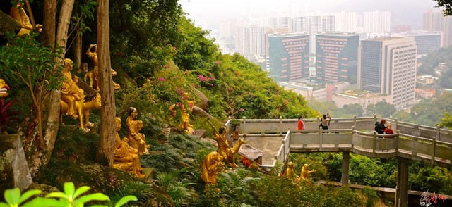 temple-boudhas-hong-kong