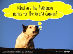 What are the Indigenous names for the Grand Canyon? = ¿Cuáles son los nombres Indígenas para la gran Cañón? #roofdog