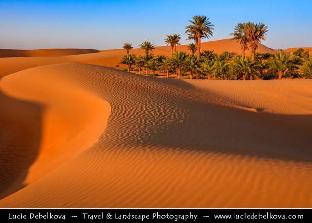 United Arab Emirates - UAE - Al Ain desert oases with palm trees